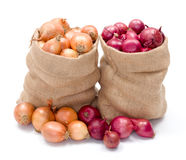 Red and yellow onions in burlap sack Royalty Free Stock Image