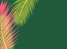 Red yellow Palms leafs green background concept. Red and yellow Palms leafs on a green background concept royalty free illustration