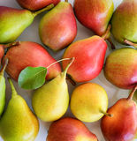 Red and yellow pears Stock Photography