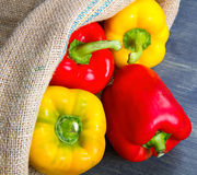 Red and yellow pepper on burlap sack Royalty Free Stock Images
