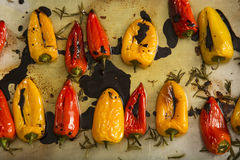 Red and yellow pepper. Fried in oil stock images