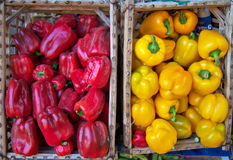 Red and yellow pepper vegetable. Full format shot of fresh red and yellow pepper in a market . Fresh Red pepper vegetable, in a wooden bag in a market Stock Photography