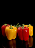 Red and yellow peppers Royalty Free Stock Image