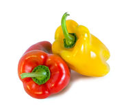 Red and yellow peppers. On a white background royalty free stock photography