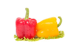 Red and yellow peppers and a ball in her salad too Stock Photo