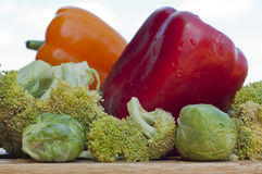 Red and yellow peppers, brussels sprouts with broccoli Royalty Free Stock Photo