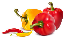 Red and yellow  peppers with chili hot peppers. Photo-realistic . Red and yellow  peppers with chili hot peppers Stock Photo