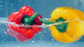 A red and a yellow peppers fall down into water. A red and a yellow bell peppers fall into water and bump each other stock video