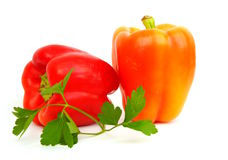 Red and yellow peppers, parsley, coriander, on a w Stock Photo