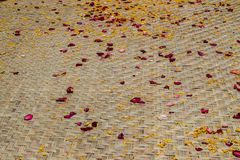 Red and yellow petal. On bamboo weave mat Royalty Free Stock Photo