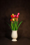 Red and Yellow and Pink tulips flower in pot Royalty Free Stock Photography