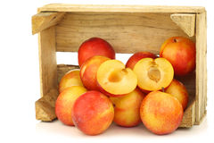 Red and yellow plums and a cut one. In a wooden crate on a white background Stock Images