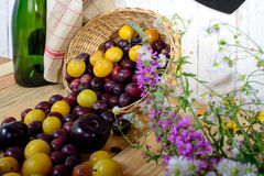 Red and yellow plums on a wooden table Stock Photos