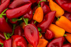 Red and Yellow Poblano Peppers For Sale. A table is filled with red and yellow poblano peppers for sale at a market in Istanbul Stock Image