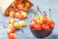 Red and yellow Rainier cherries Stock Photo