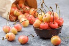 Red and yellow Rainier cherries Stock Photography