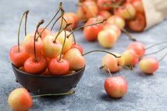 Red and yellow Rainier cherries Royalty Free Stock Image