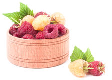 Red and yellow raspberries in wooden bowl isolated on white. Red and yellow raspberries in a wooden bowl isolated on white background Stock Images