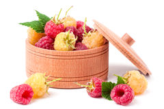 Red and yellow raspberries in wooden bowl isolated on white. Red and yellow raspberries in a wooden bowl isolated on white background Stock Photos
