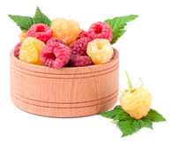 Red and yellow raspberries in wooden bowl isolated on white. Red and yellow raspberries in a wooden bowl isolated on white background Stock Photo