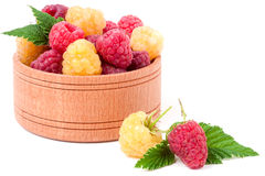 Red and yellow raspberries in wooden bowl isolated on white Stock Image