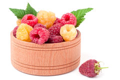 Red and yellow raspberries in wooden bowl isolated on white Royalty Free Stock Photos