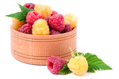 Red and yellow raspberries in wooden bowl isolated on white. Red and yellow raspberries in a wooden bowl isolated on white background Stock Photography