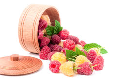 Red and yellow raspberries in wooden bowl isolated on white. Yellow and red raspberry with leaves spilled from a wooden bowl isolated on white background Stock Photography