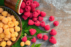 Red and yellow ripe raspberries Royalty Free Stock Photography