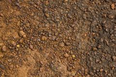 A red yellow rock with many small stones of different sizes. natural rough surface texture. Red yellow rock with many small stones of different sizes. natural royalty free stock photos