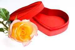 Red yellow rose and a heart shape box Stock Image