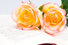 Red yellow rose over a book Stock Photography