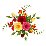 Red and yellow roses and freesia flowers. Vector illustration. Stock Photo