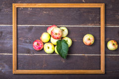 Red-yellow seasonal apples with leaf in wooden frame on the back Stock Images