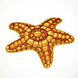 Red and yellow starfish sea life object Stock Images