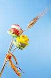Red and yellow sugar rose and wheat ear on blue background Royalty Free Stock Photos