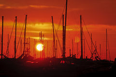 Red and yellow sunset. In the sea Stock Image