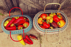 Red and yellow sweet pepper in a basket Royalty Free Stock Photography