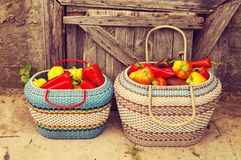 Red and yellow sweet pepper in a basket Stock Photo
