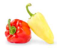 Red and yellow sweet peppers Stock Image