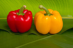 Red and yellow sweet peppers Royalty Free Stock Photography
