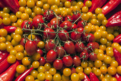 Red and yellow tomatoes background Stock Photos