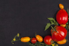 Red and yellow tomatoes. Different varieties of red and yellow tomatoes on black background, top view. Healthy fruit eating Stock Photos