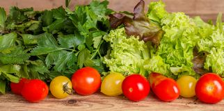 Red and yellow tomatoes, fragrant herbs and lettuce leaves. On wooden background stock photography