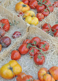 Red and yellow tomatoes at market Royalty Free Stock Images