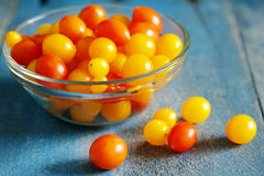 Red and yellow tomatoes natural light Stock Photography