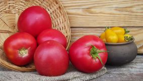 Red and yellow tomatoes. Red and yellow tomatoes in a basket and a pot royalty free stock images