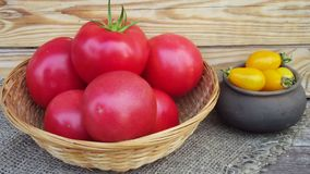Red and yellow tomatoes. Red and yellow tomatoes in a basket and a pot royalty free stock image