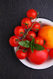 Red and yellow tomatoes in a white bowl Royalty Free Stock Photo