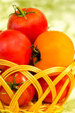 Red and yellow tomatoes in a wicker basket Royalty Free Stock Photos